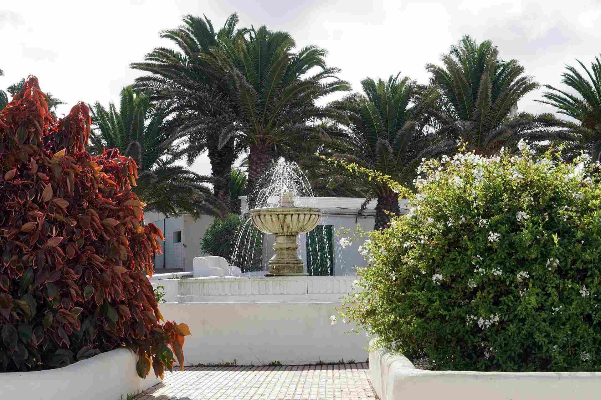 Brunnen im Ort Teguise auf Lanzarote