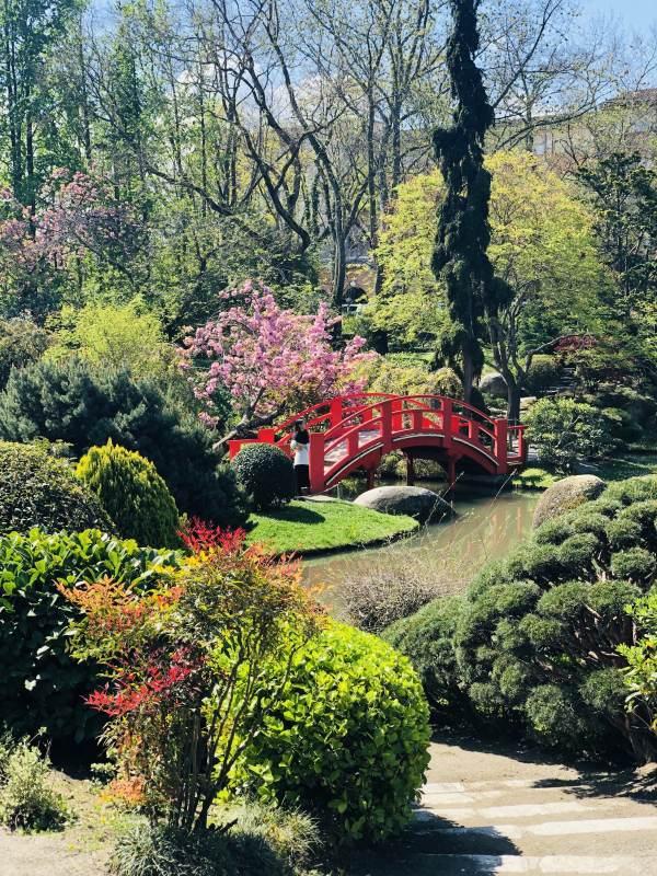Brücke im Japanischen Garten Toulouse