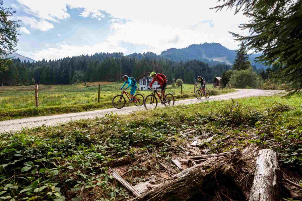 Geführte Mountainbiktouren durch die Kitzbüheler Alpen