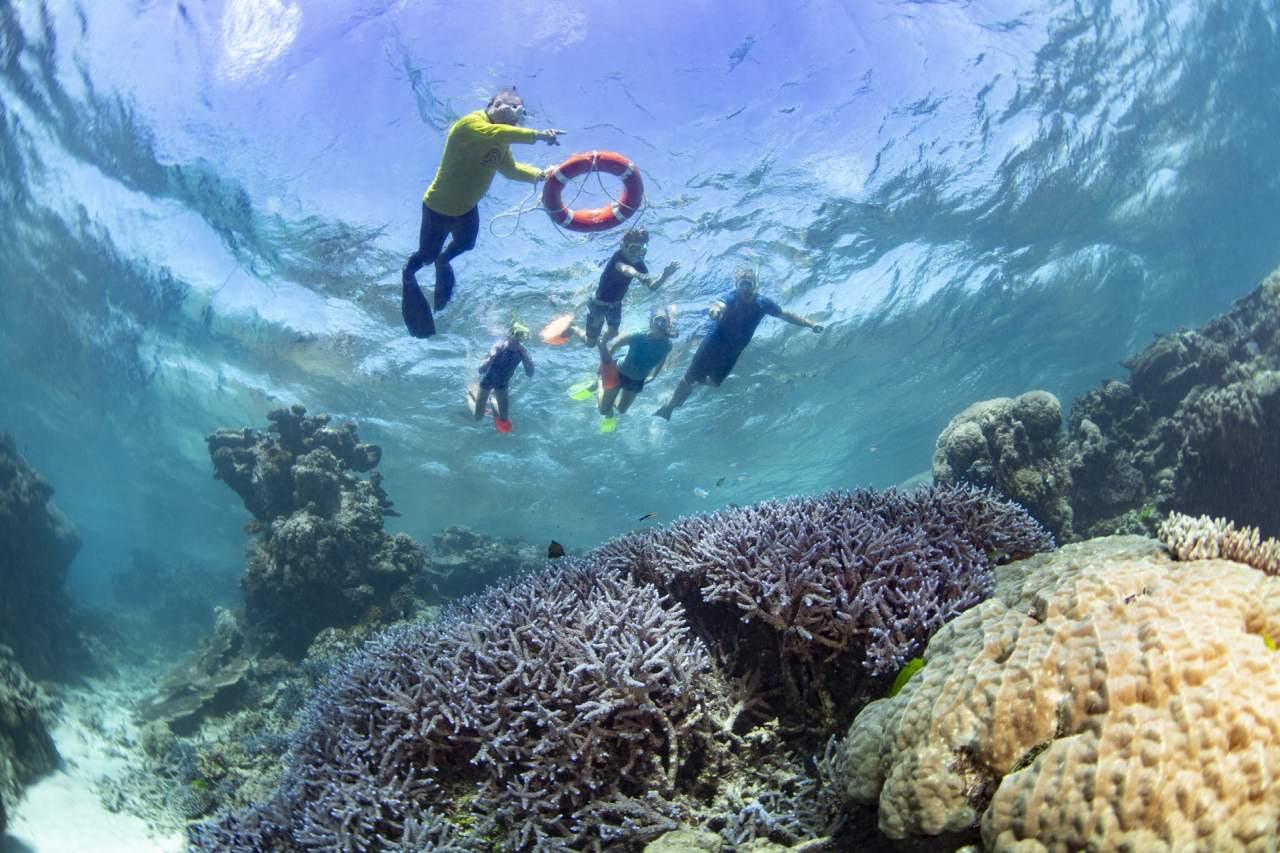 Master Reef Guide schnorchelt mit Familie
