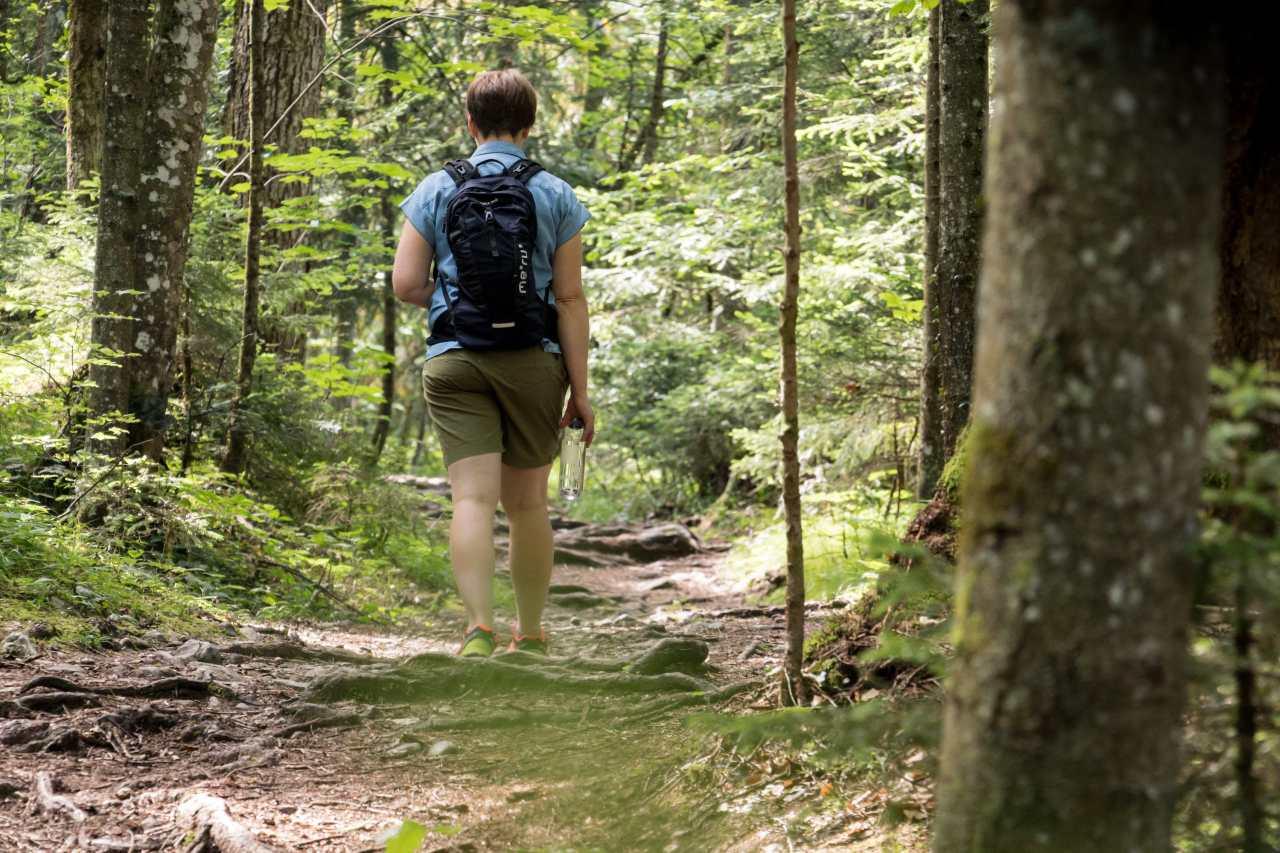 Spaziergänger in einem Wald im Kufsteinerland