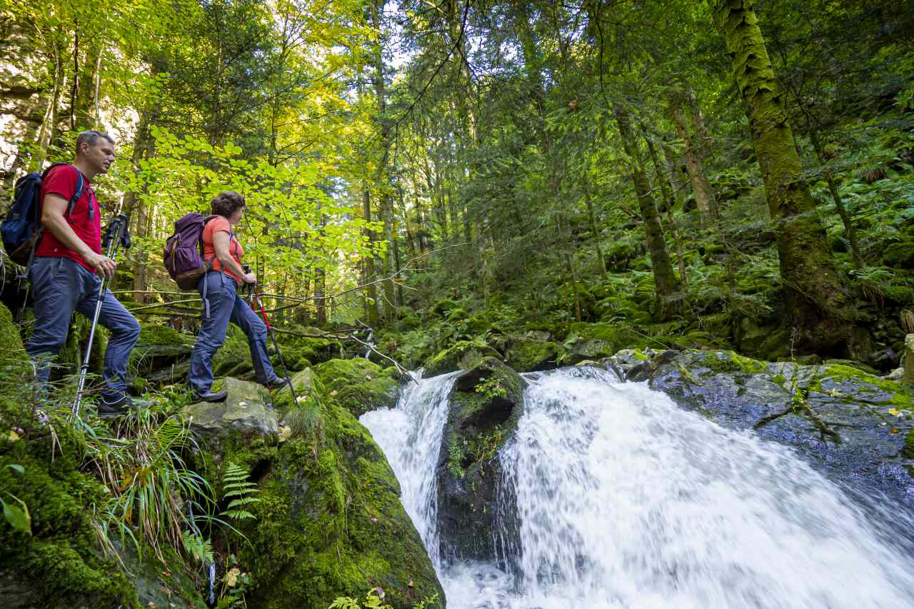 Wasserfall im Schwarzwälder HüttenWinkel