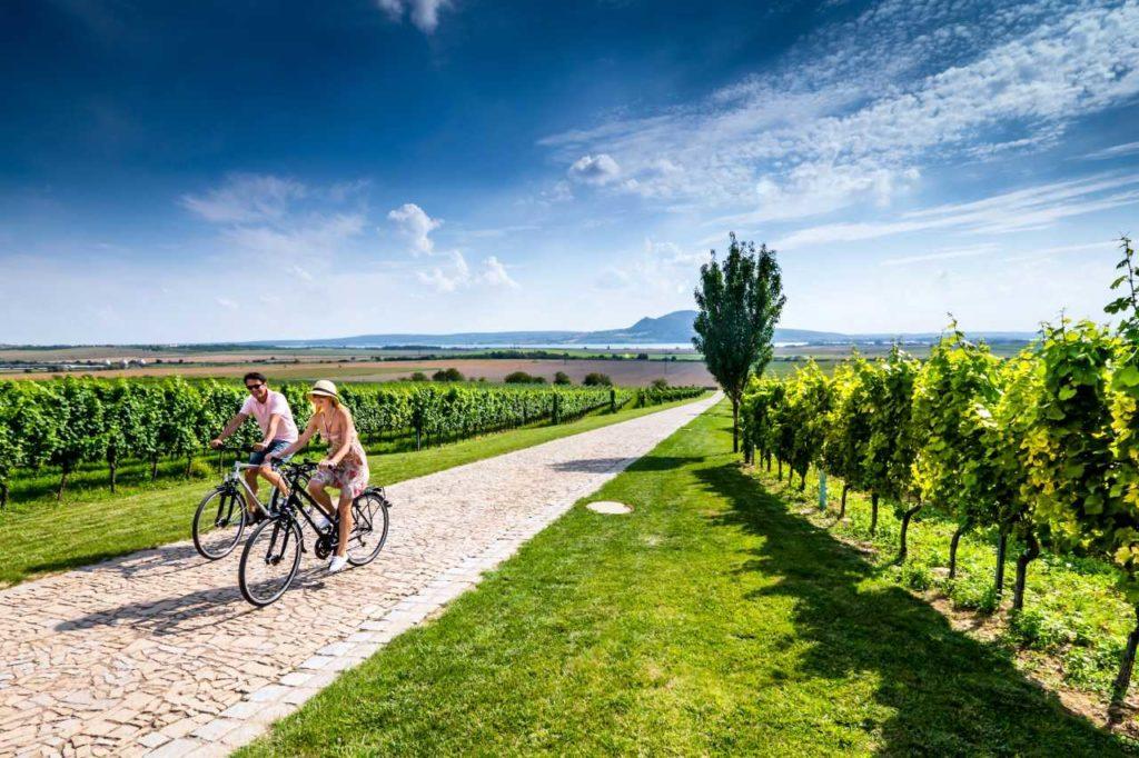 Fahrradtour Weinberge Südmähren