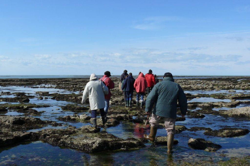 Führung Gezeitenfischerei Oléron