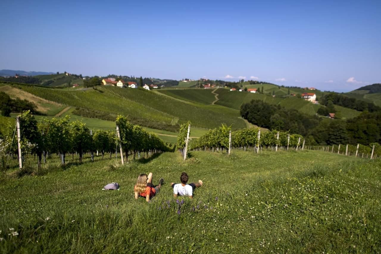 Wanderer Pause Weinstock Südsteiermark