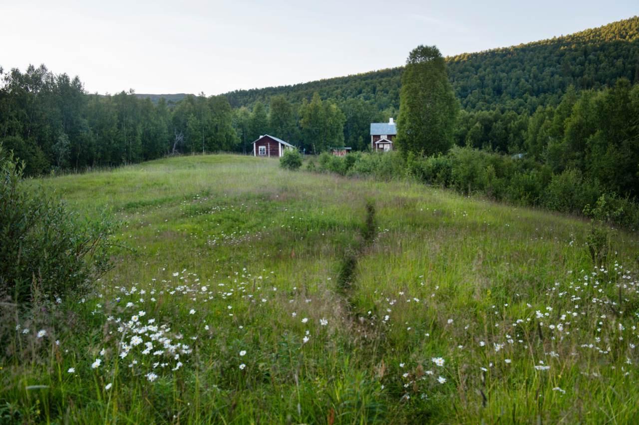 Wanderhütte im nördlichen Schweden