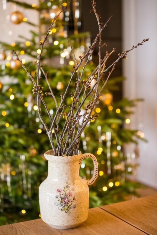Barbarazweige Weihnachten Kärnten