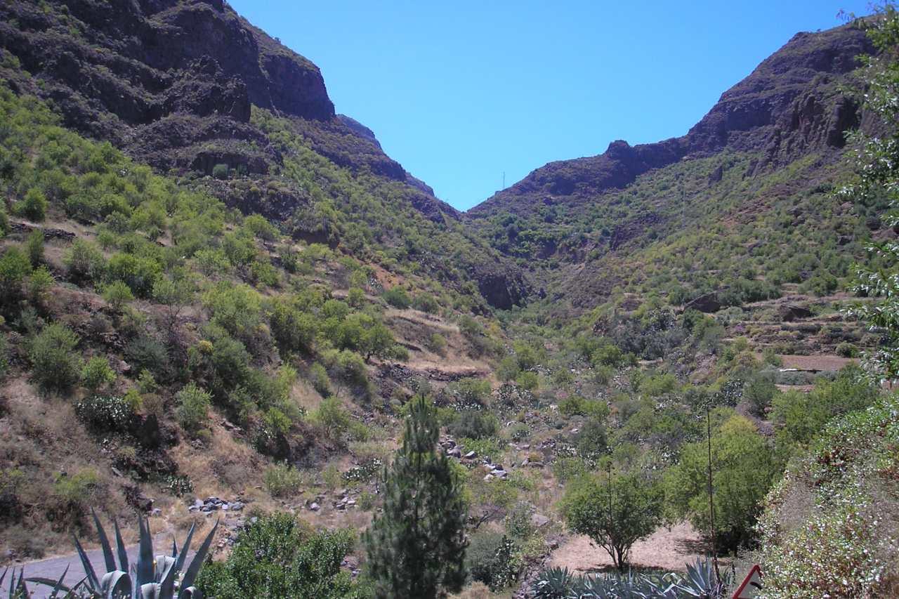 Barranco de Guayadeque