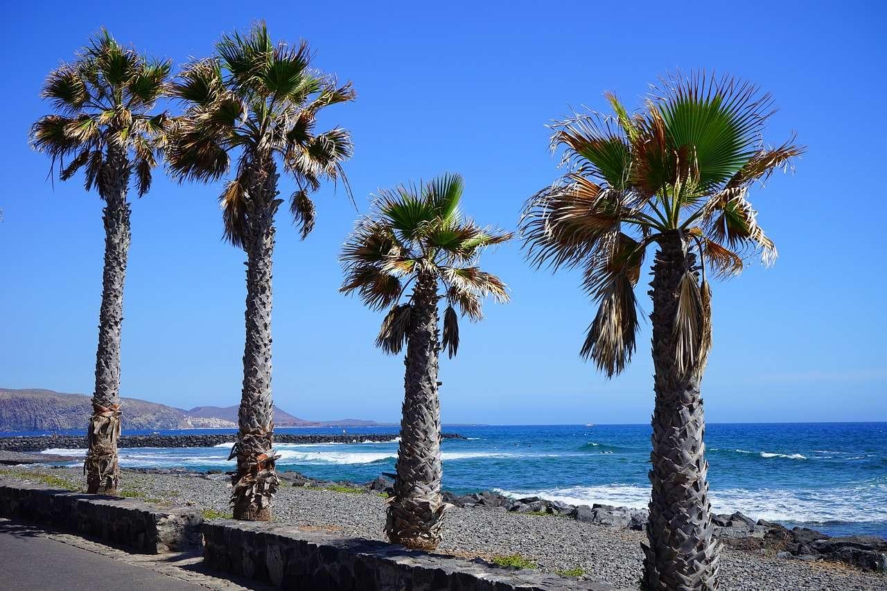 Strand an der Südküste Teneriffas