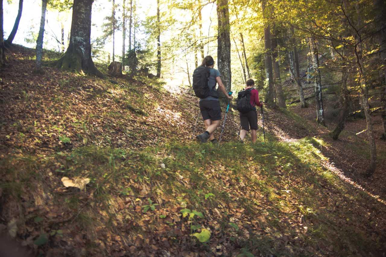 Wanderer im Herbst auf dem Bettlersteig