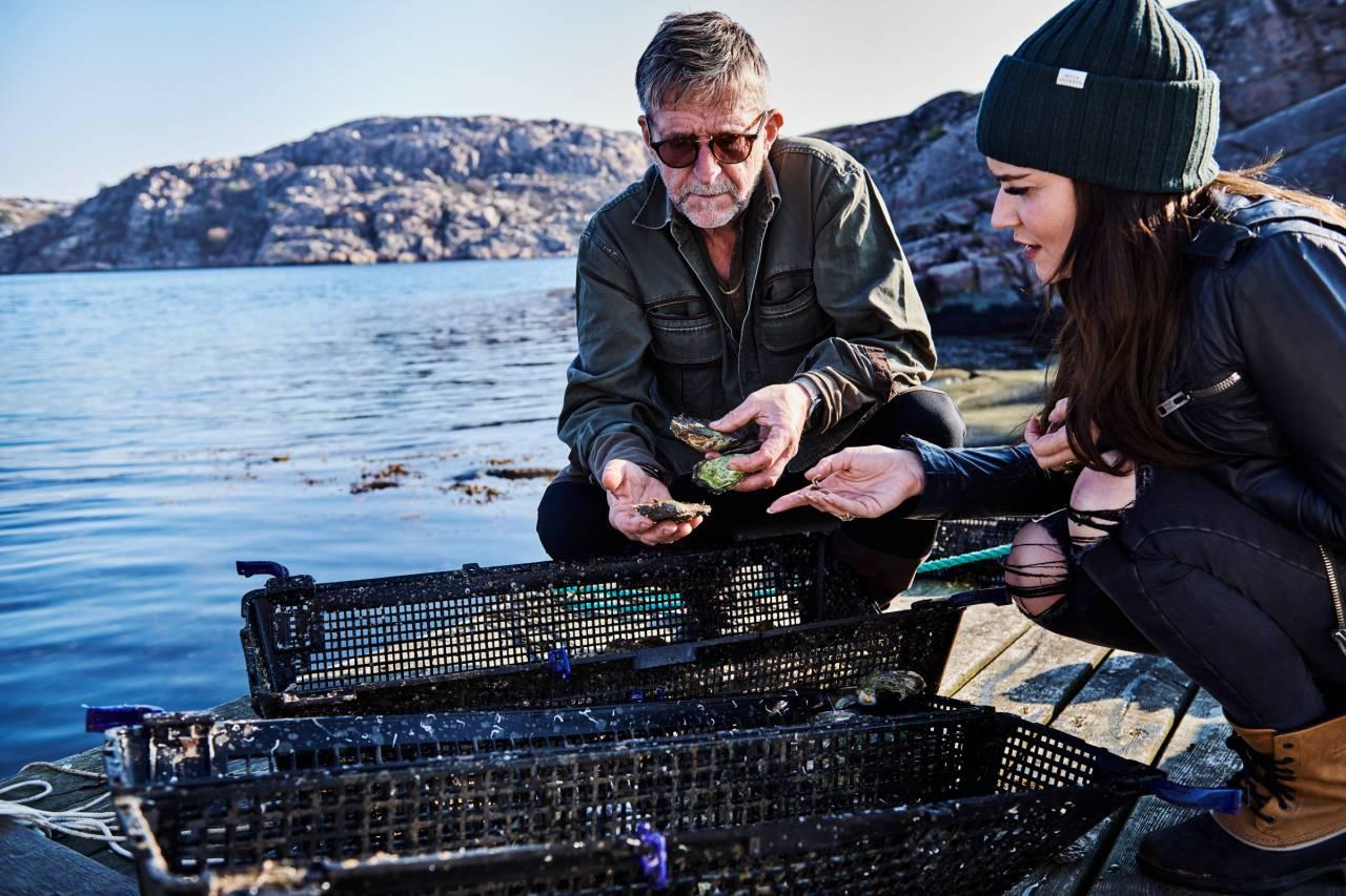 Austern- und Muscheltour in Lysekil