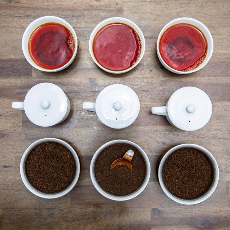 Create Your Own Blend auf der Nerada Tea Plantation