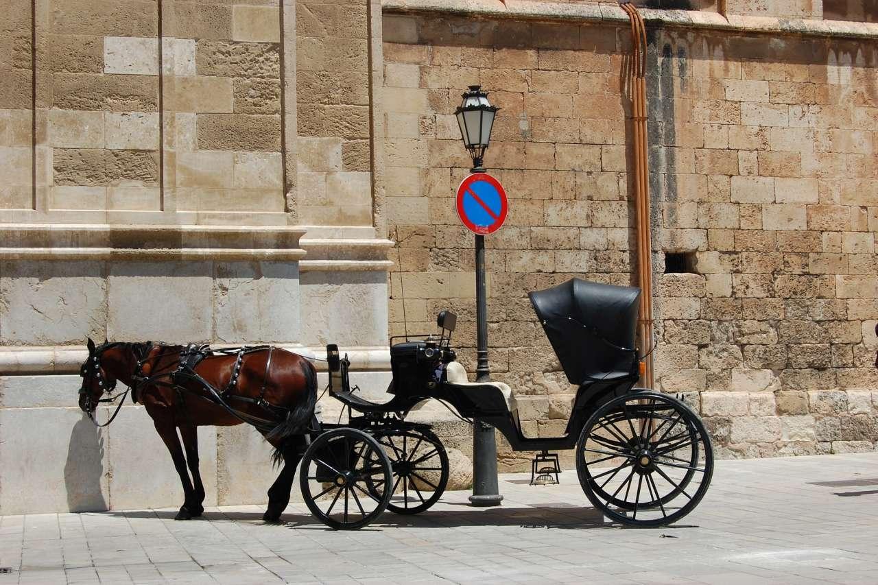 Pferdekutsche in Palma de Mallorca