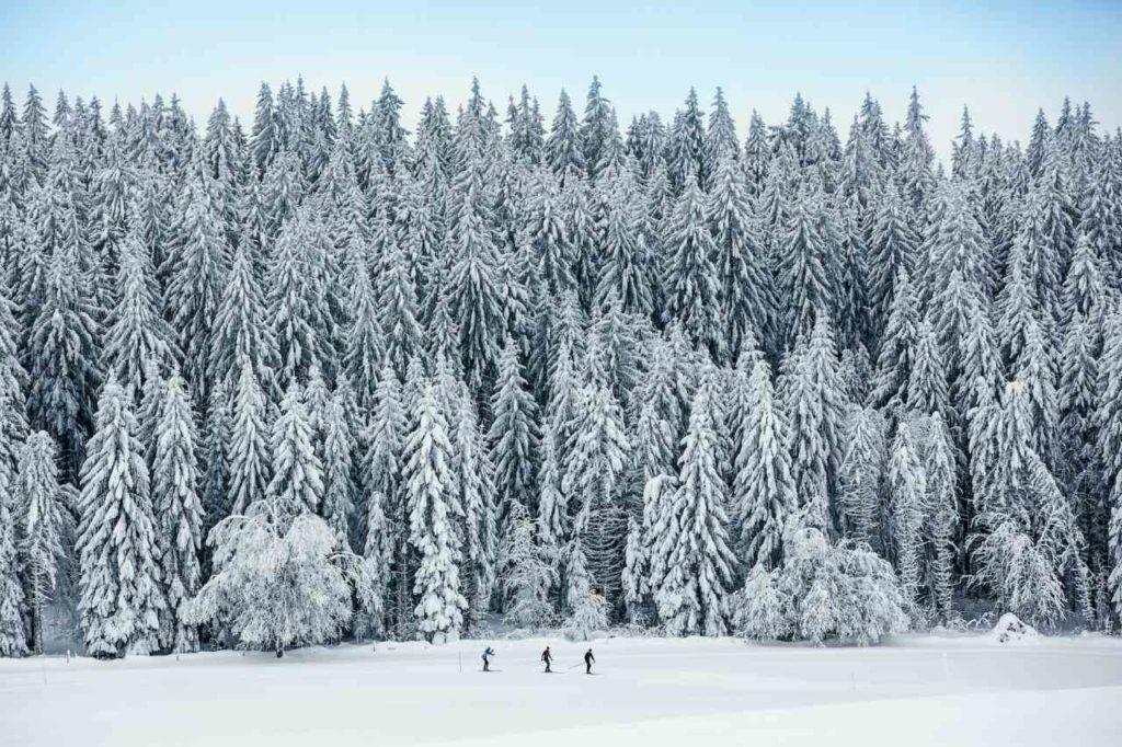 La Grande Boucle im Naturpark Doubs