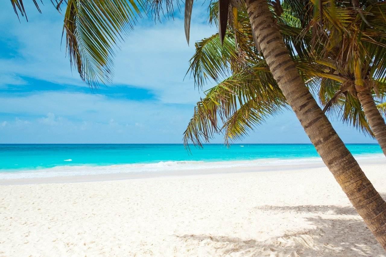 Reisemagazin Karibik