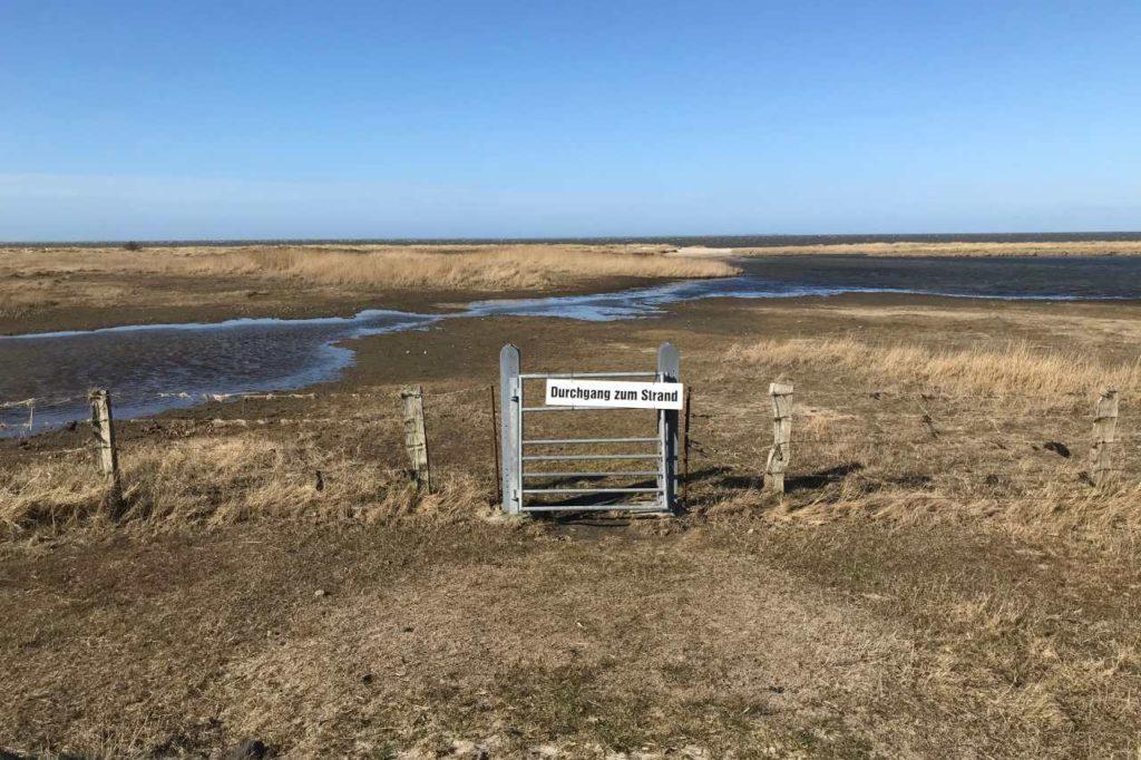 Sörenwaii Vorland Föhr - Deich und Strand