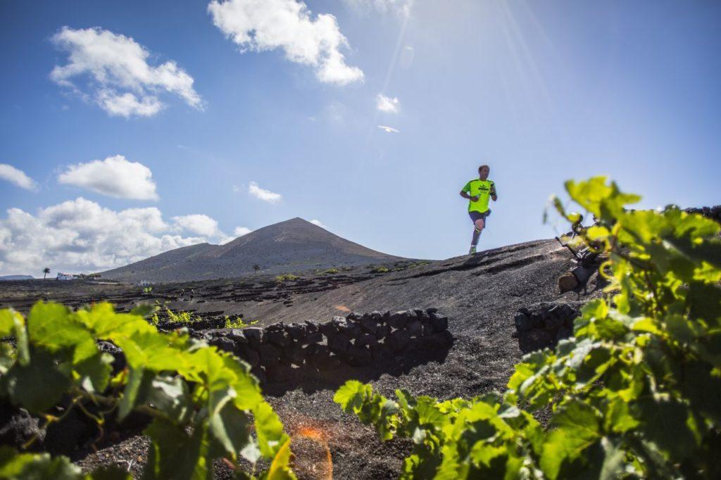 Läufer beim Lanzarote WineRun