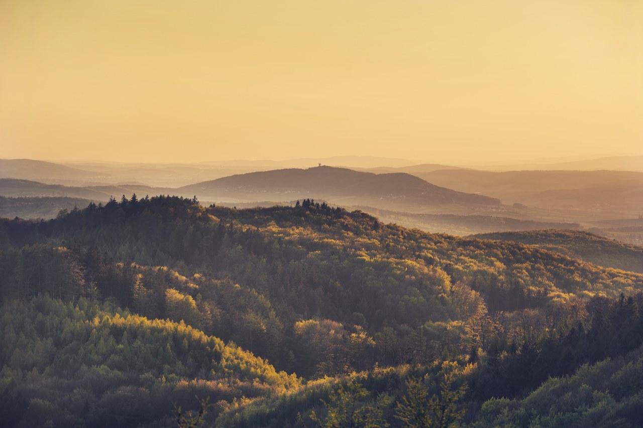 Biosphärenreservat Wienerwald von der Troppbergwarte