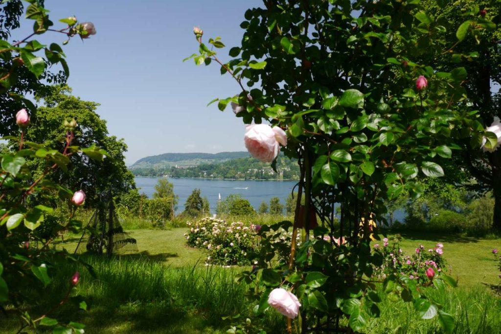 Privatgarten Familie Kohler Mammern Bodensee