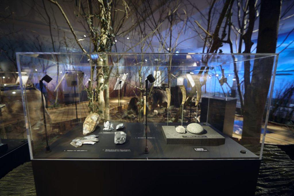 Steinzeitliche Funde in der LOLA-Ausstellung