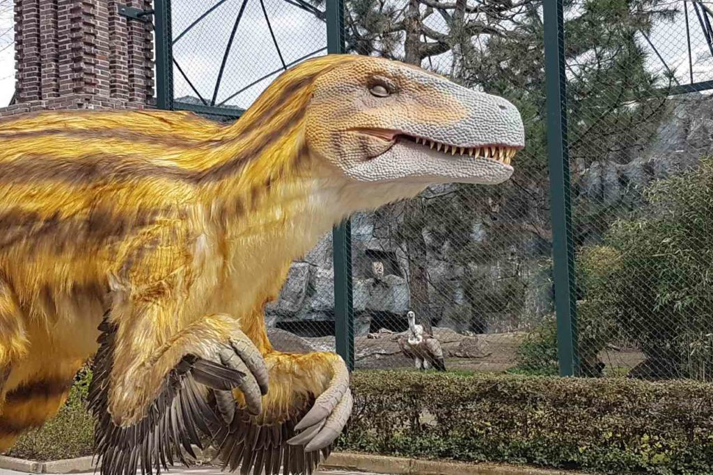 Dino und Gänsegeier im Zoo Leipzig