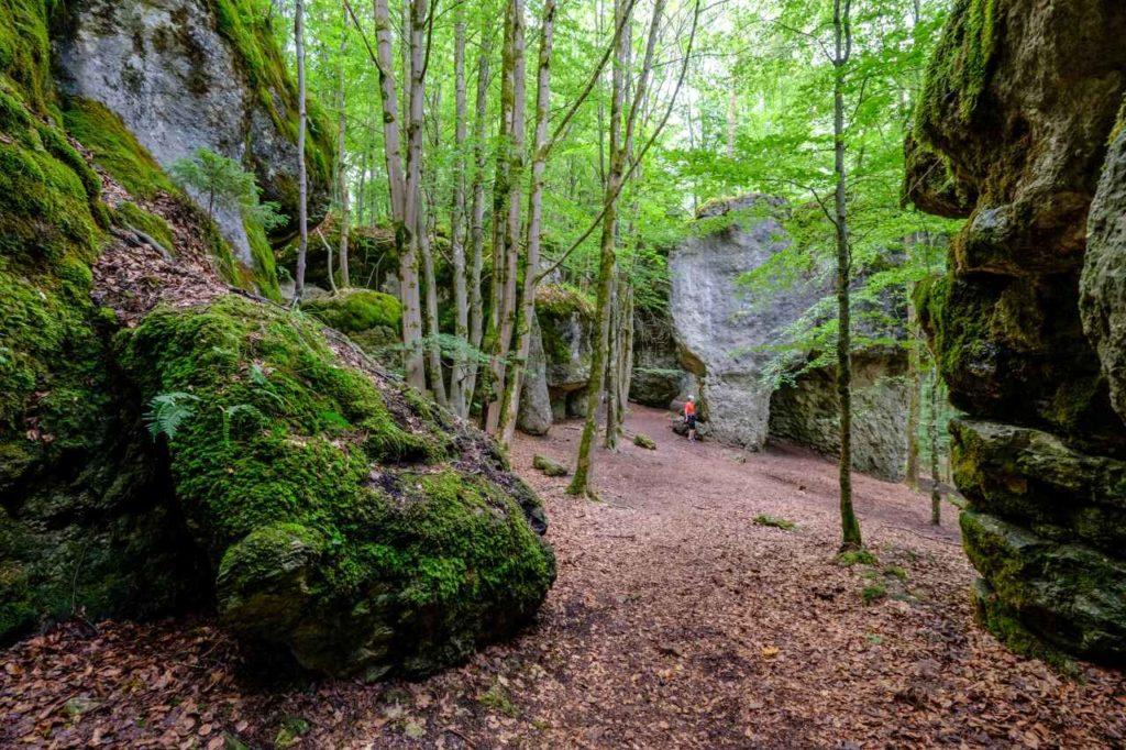 Naturschutz und Klettersport Nürnberger Land