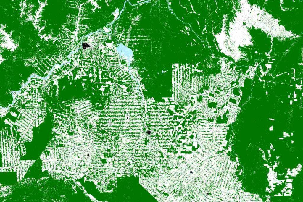 Abholzung Regenwald Brasilien Satellitenperspektive