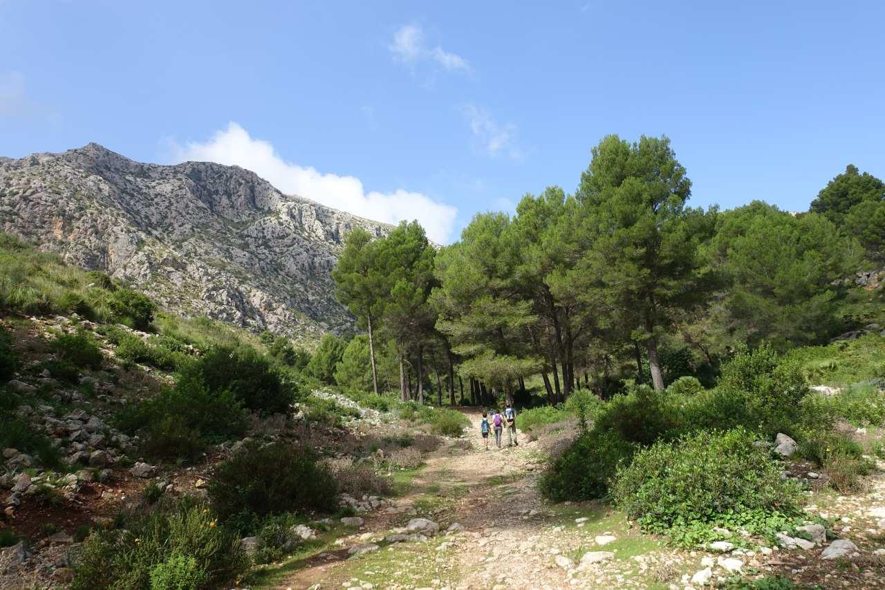 Mallorca auf die feine Art