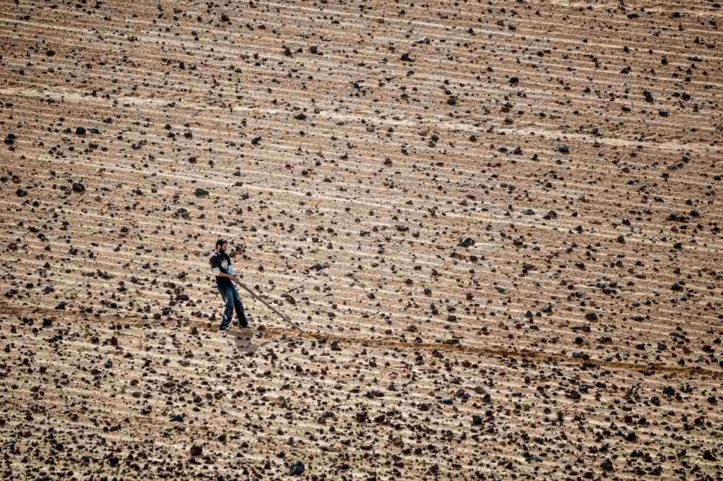Traditionelle Landwirtschaft Lanzarote