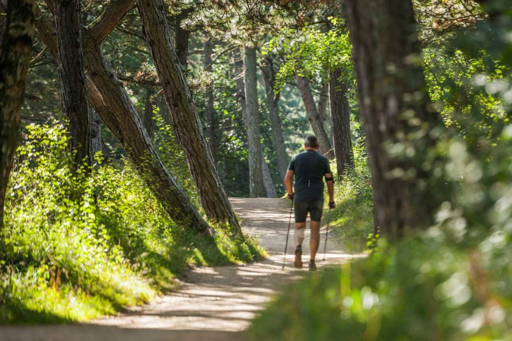 Wanderer im Kiefernwald St.Peter-Ording