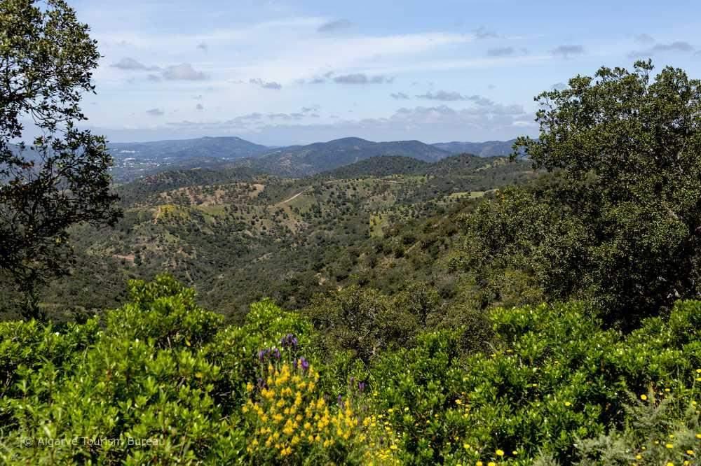 Algarve Hinterland Landschaft