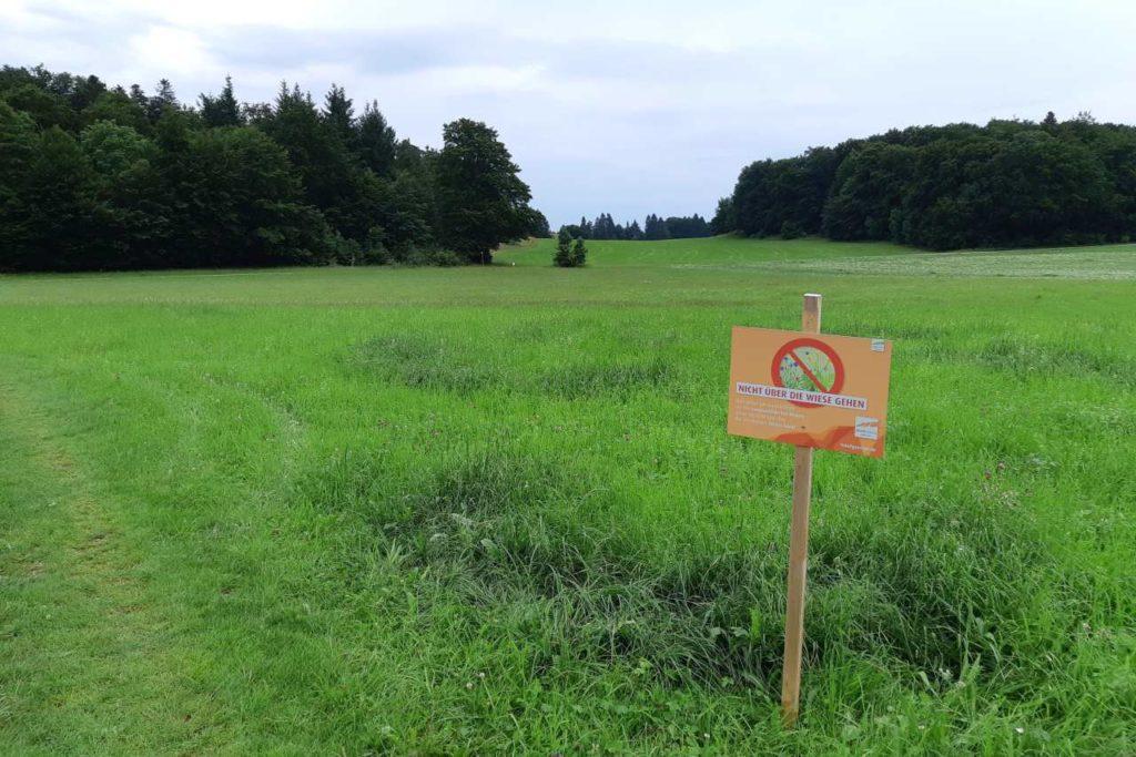 Verbotsschild Wiesenüberquerung Albstadt