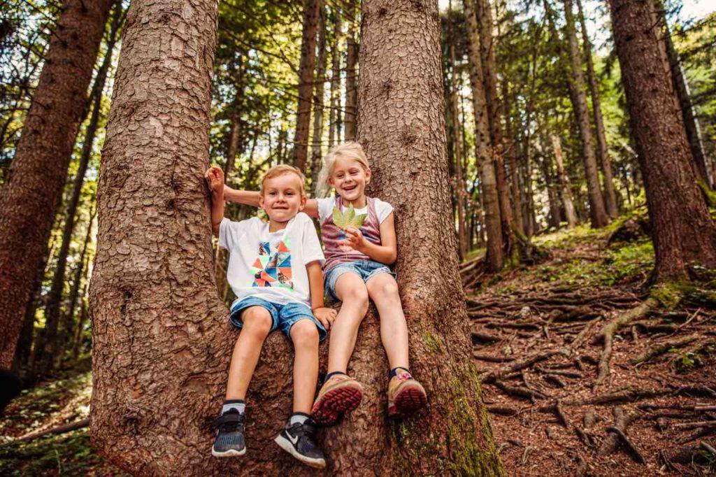 Waldfühlung für Kinder Pfronten