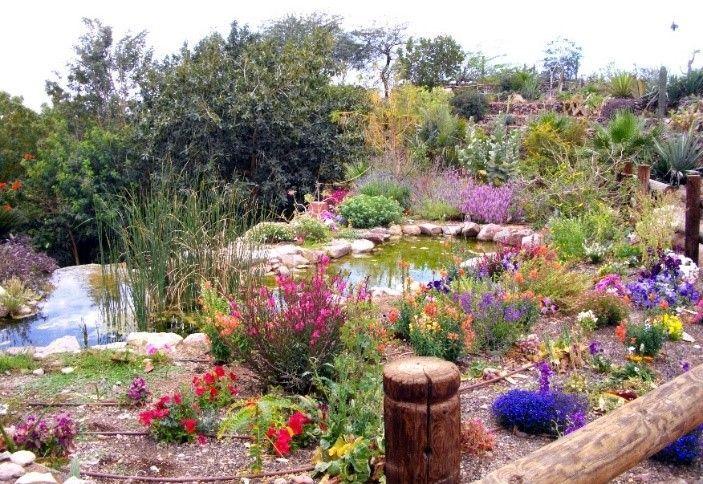 Botanischer Garten Eilat