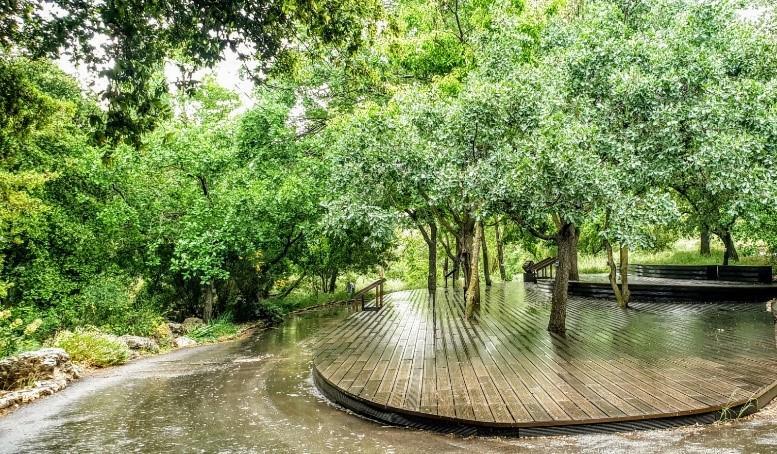 Botanischer Garten Jerusalem