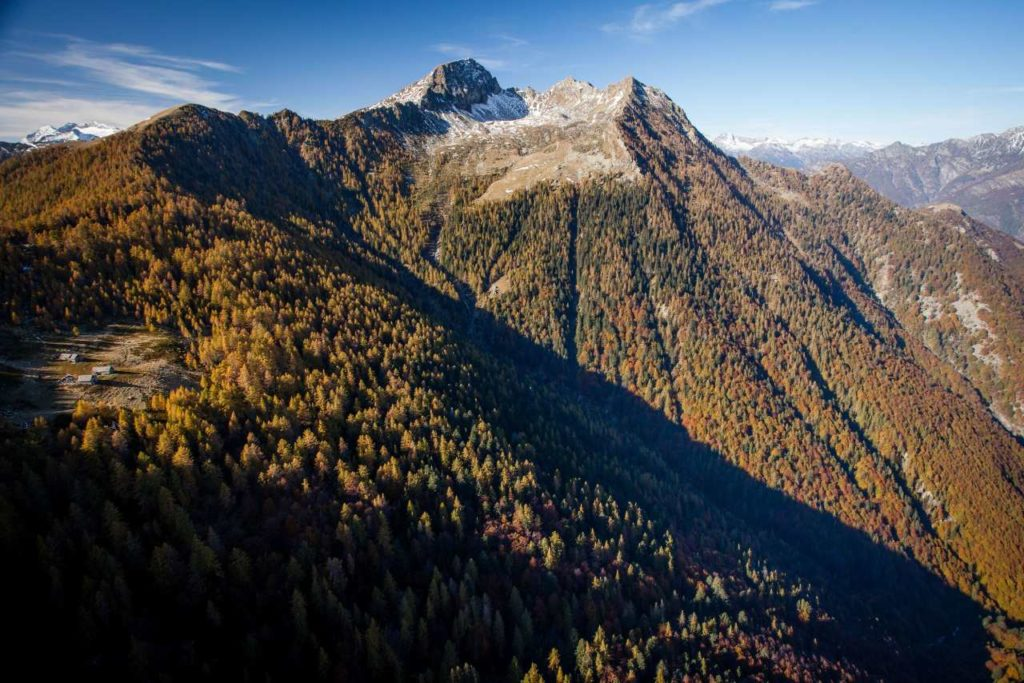 Buchenwälder im Valle di Lodano