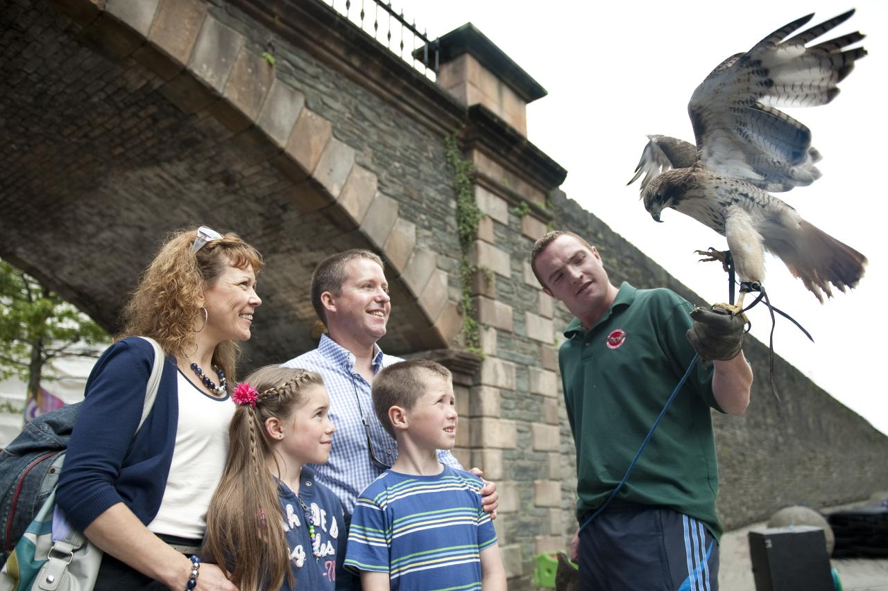 Falkner Familie Irland