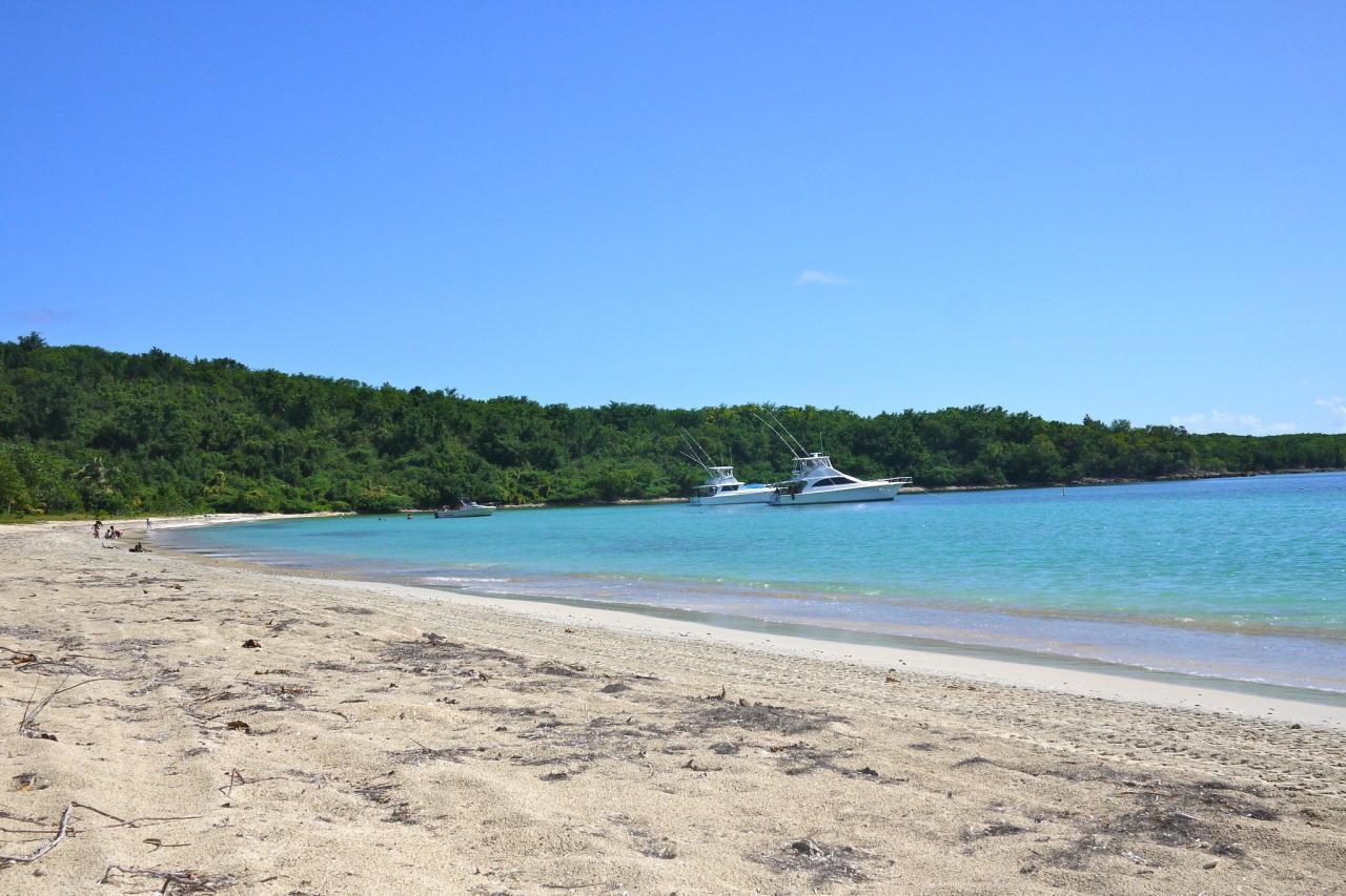 Strand auf Vieques Puerto Rico