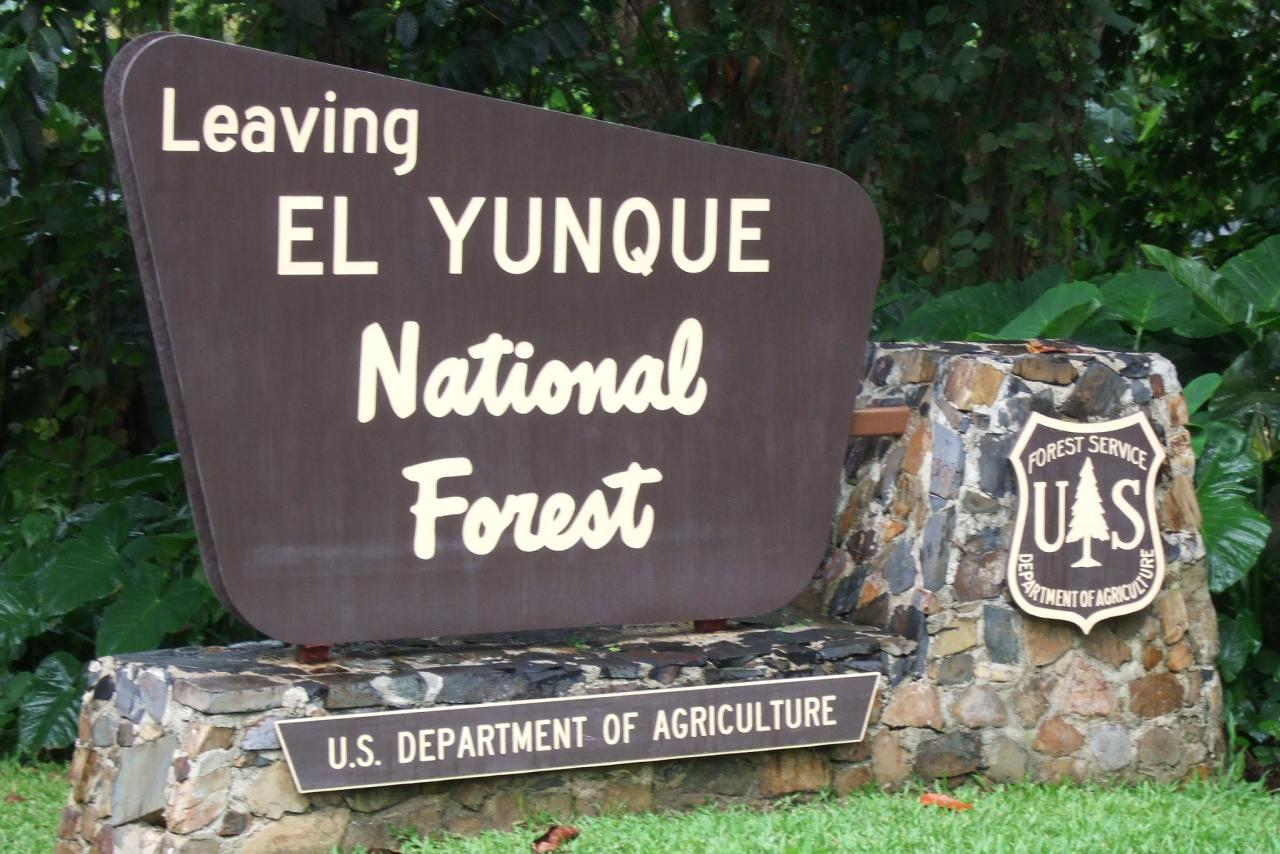 Wegweiser El Yunque Tropical Rainforest