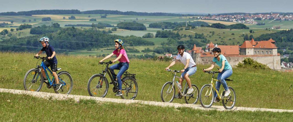 Fahrradfahrer in der Rieslandschaft mit Harburgblick