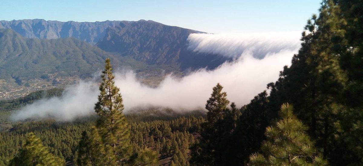 La Palma Wolken über Wald