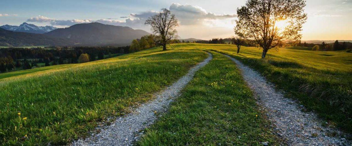 Meditativ wandern am Wetzsteinrücken bei Saulgrub