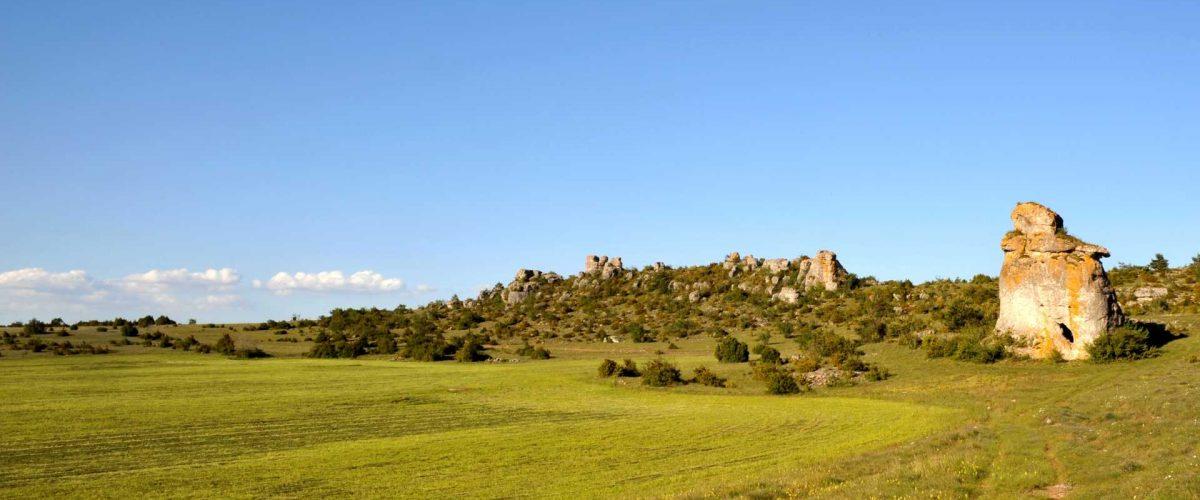 Naturpark Grands Causses in Okzitanien (Occitanie)