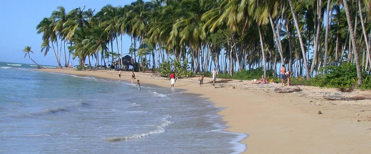 Palmenstrand Dominikanische Republik