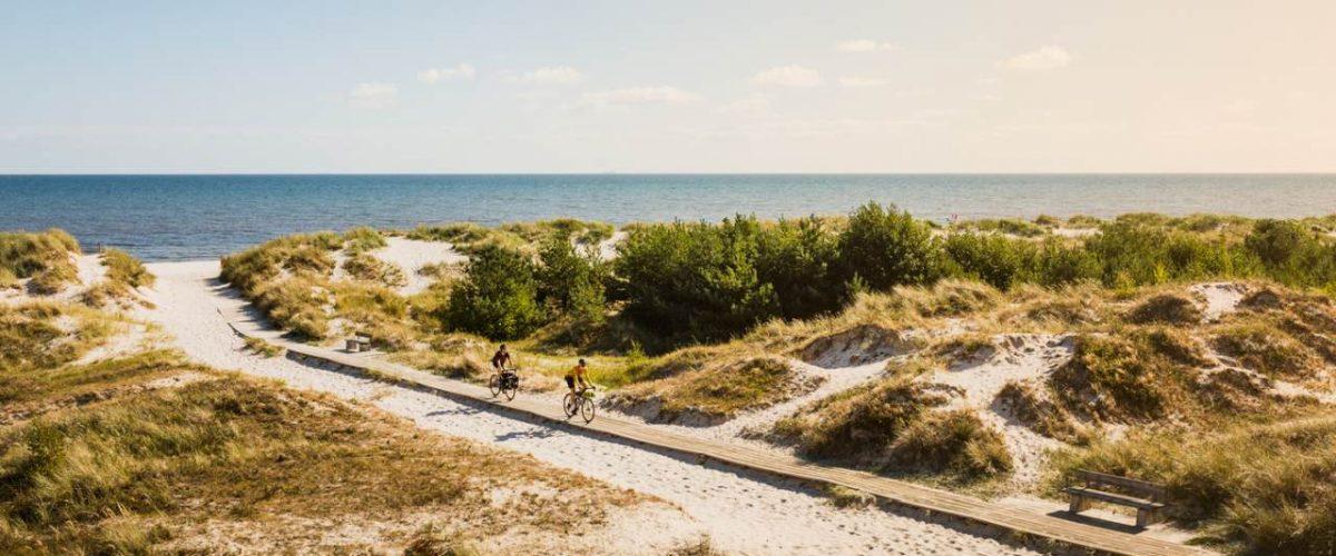 Radfernweg Sydkustleden am Sandhammaren Strand