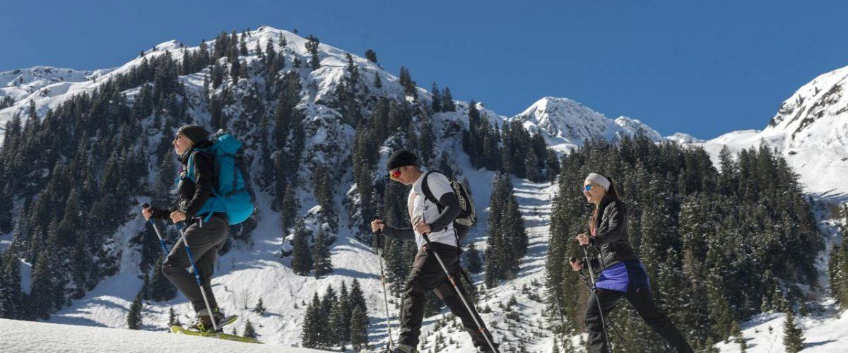 Geführte Wanderungen: Auf leisen Sohlen zu den schönsten Plätzen in der Region Wildschönau. Bild: Wildschönau Tourismus